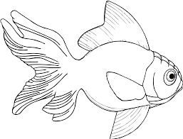 fish line art free download clip art free clip art on
