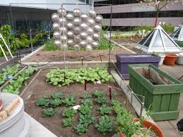garden layout plans metro vancouver rooftop vegetable build your own home roof