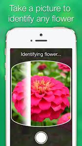 likethat garden u2013 flower identification by justvisual inc
