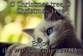 Cat Christmas Tree Meme - first world problems cat memes quickmeme