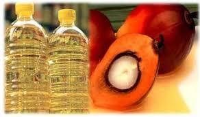 Minyak Cpo berita sawit harga cpo di bursa malaysia menguat