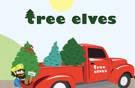 christmas tree delivery king of pops branches out to christmas tree delivery atlanta