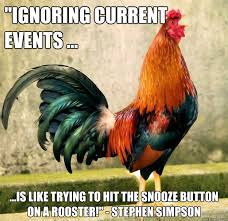 Rooster Meme - crowing rooster memes quickmeme