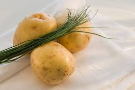 yukon gold potato and other gold potatoes history