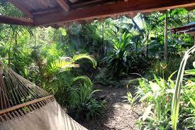 the backyard jungle u2013 casa colorado u2013 luxury rental house in