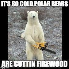 It S So Cold Meme - it s so cold polar bears are cuttin firewood meme