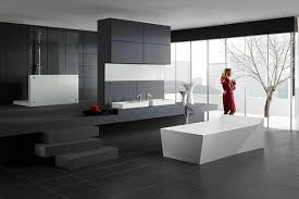 home interior bathroom bathroom home interior design with structure and a more subtle color