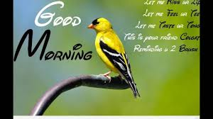morning wishes quotes prayers blessings greetings e card