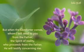 comforter bible verse span class rcvc verse ref book john chapter 15 verse 16