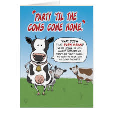 cow greeting cards zazzle
