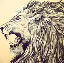 best 25 lion head drawing ideas on pinterest lion face drawing
