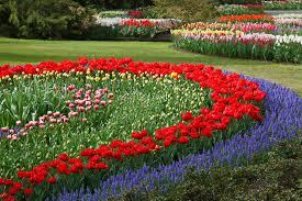 flower garden layout plans garden design with images flower gardens