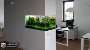 Aquascape Design Outstanding Small Aquascape Designs Images Design Ideas Surripui Net