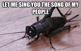 Crickets Chirping Meme - cricket chorus of god real or fake atheist amino amino