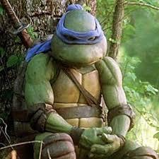 Ninja Turtle Meme - sad ninja turtle blank template imgflip