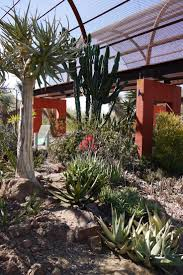 Scottsdale Az Botanical Gardens by 56 Best Arizona Attractions Images On Pinterest Arizona Science