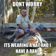 Funny Australia Day Memes - meanwhile in australia croc safety funny pinterest