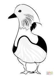 mandarin duck coloring page free printable coloring pages