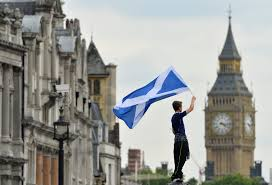 a scotland soccer fan waves a scottish saltire flag with big ben