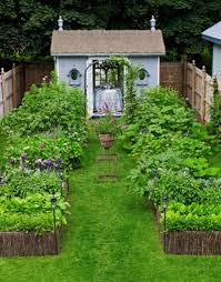 distinctive green grass footpath then various flowers plants for