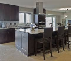 stock kitchen cabinets michigan cabinets express