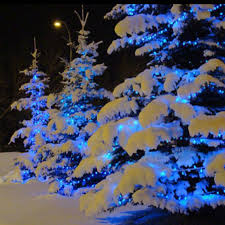 best 25 blue christmas lights ideas on pinterest christmas