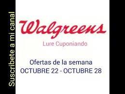 walgreens dolce and gabbana light blue perfume at walgreens