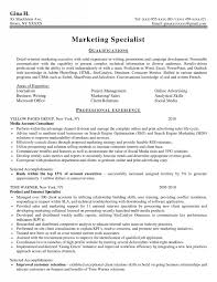 Benefits Specialist Resume Sample by 28 Resume Samples For Applying Professional Marketer Positions