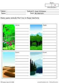 primaryleap co uk what animals live here worksheet