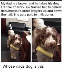 Law Dog Meme - dog lawyer meme famous dog 2018