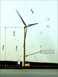 failure analysis and risk management of a collapsed large wind