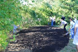 long island native plant initiative native plants uri botanical gardens blog