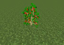 ephedra plant wikipedia crataegus fossils and archeology mod revival wiki fandom