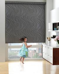 Roller Shade Douglas Designer Roller Shade In The Terra Falls Fabric Collection