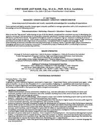 Activity Director Resume Samples by It Manager Resume It Director Sample Resume It Resume Writer