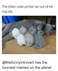 Printer Meme - the kitten color printer ran out of ink mid job has the funniest