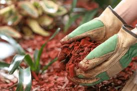 best mulch for vegetable garden 2017 a gardener u0027s guide to mulching