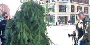 dresses as tree blocks traffic in year s worst costume
