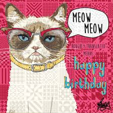 grumpy cat birthday card by rose hill meet margaret at tattypuss