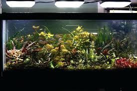 best led light for planted tank led aquarium lighting freshwater led lights planted aquarium method