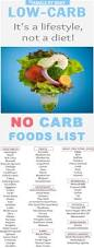 best 25 no carb diets ideas on pinterest no carb foods