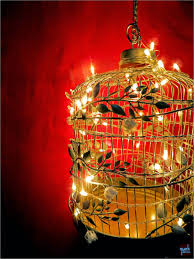 Home Decor Bird Cages Quirk It Design Up Cage