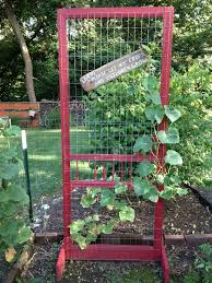 made this out of a old screen door makes a great trellis for my