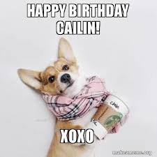 Corgi Birthday Meme - happy birthday cailin xoxo make a meme