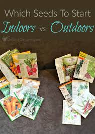 seeds to start indoors vs direct sowing