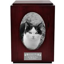 pet urns for cats cherry finish wood cat urn with oval photo frame