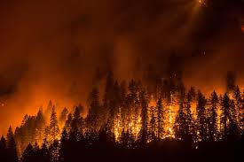 Wild Fire Columbia Gorge by Eagle Creek Fire Explodes To 32 000 Acres Merges With Indian