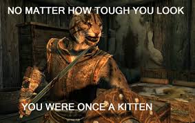 Skyrim Memes And Jokes - no matter tough you look you were once a kitten skyrim