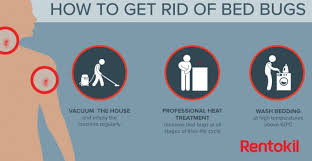 How To Kill Bed Bugs At Home How To Kill Bed Bugs Fast Yourself With Heat Home Remedies