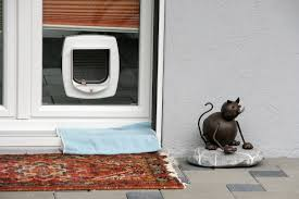 Cat Flap Patio Door Looking For Cat Flaps Dunstable Glass Bedfordshire